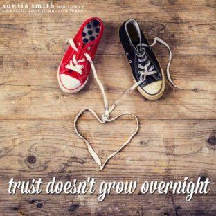 trust-doesnt-grow-overnight-e1485547743345